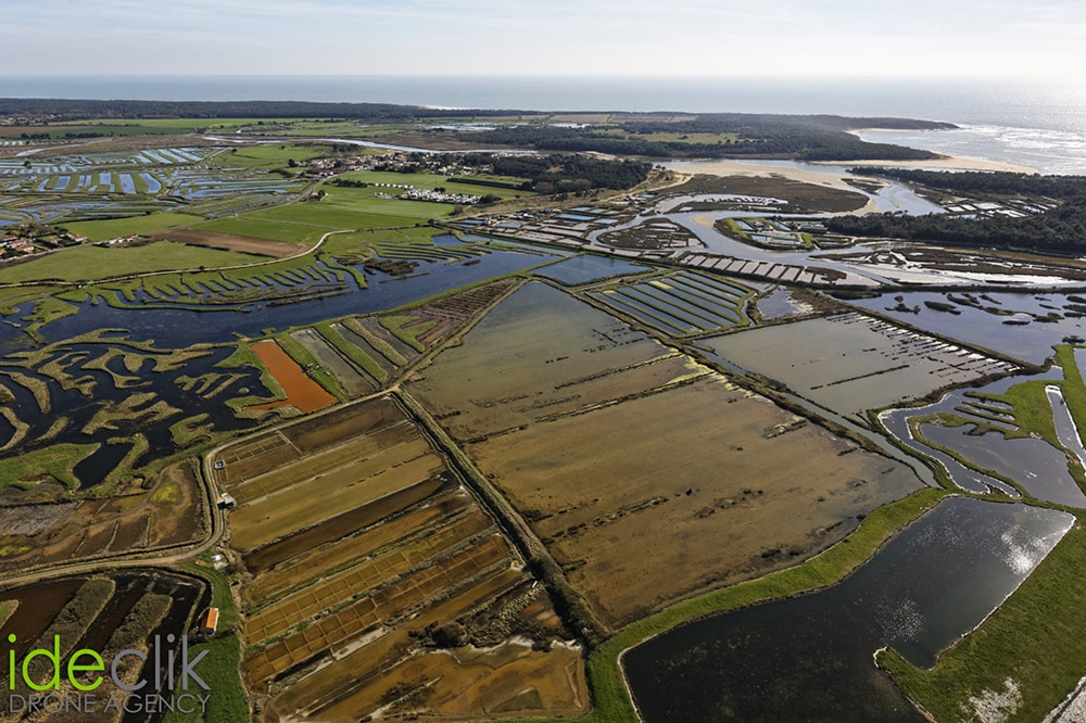 Photo aérienne ulm Vendée - Loire Atlantique